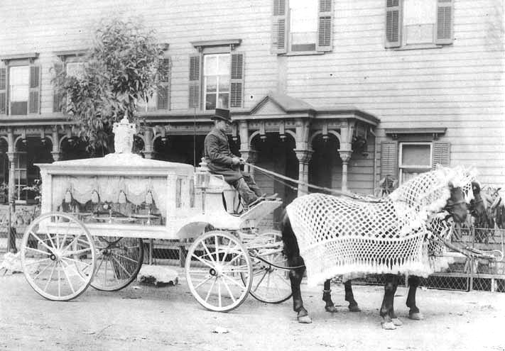 Horse-drawn funeral hearse 1900