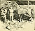Hound and horn in Jedforest - being some experiences of a Scottish M.F.H. - by T. Scott Anderson; illustrations by G. Denholm Armour (1909) (14768133485).jpg