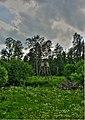 Hunter's tower - panoramio.jpg