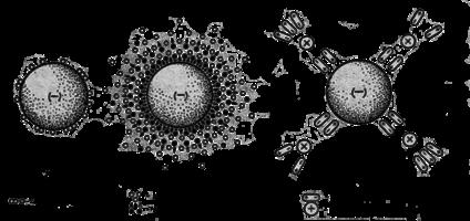 Свободная вода - это вода, которая содержится в... Рисунок 2. Схема строения гигроскопической влаги по данным...