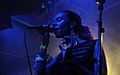 I-Wolf and the Chainreactions at Fluc Wanne WAVES VIENNA 2013 14.jpg
