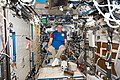 ISS-53 Paolo Nespoli tests a personal radiation shielding garment inside the Destiny lab.jpg