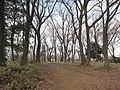 Ida-yama forest , Kawasaki - panoramio - Kaz Ish (5).jpg