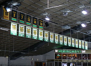 Ilves - Banners commemorating championships and retired player numbers of Ilves in Tampereen jäähalli.