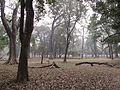 Indian Botanic Garden - Howrah 2012-01-29 1651.JPG