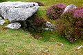 Innisidgen entrance graves - Isle of St Mary's - panoramio.jpg