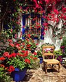 Interior patio with chair and flowers at the Patio Festival in Córdoba, Andalucía, Spain.jpg