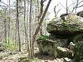 InterstateStateParkMN arf5.JPG