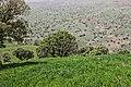 Iran (12862854713).jpg