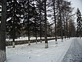 Irkutsk. Akademgorodok. February 2013 - panoramio (169).jpg