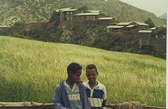 Irob (woreda) - Image: Irob boys in Alitena