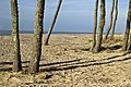 Jūrkalne - panoramio (1).jpg