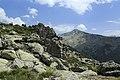J28 828 Collado de las Chorreras, Alto de Castilfrío.jpg