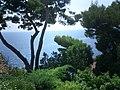 Jardins Saint-Martin - monaco - panoramio.jpg