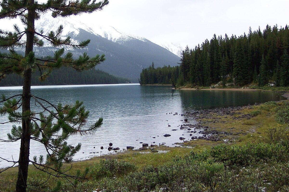 Wood Buffalo National Park >> Parco nazionale di Jasper - Wikipedia