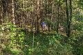 Jersikas pagasts, Latvia - panoramio (25).jpg