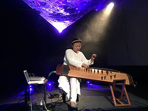 Kim Jin-hi - Jin Hi Kim plays an electric komungo (2015).