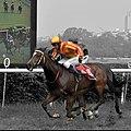 Jockey RS BHATI.jpg