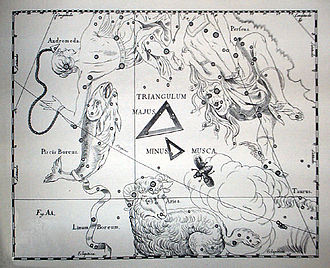 Musca Borealis - Constellation Musca in Johannes Hevelius' atlas (1690). In this atlas, constellations are shown as they would appear on a globe, i.e. back to front by comparison with their appearance in the sky.