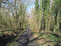 Jubilee Country Park path.JPG