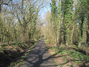 Jubilee Country Park - Path in Jubilee Country Park