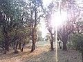 Kalinchowk road3.jpg