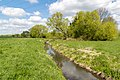 Kalletal - 2015-05-02 - LIP-013 Aberg-Herrengraben (14).jpg