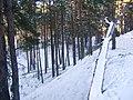Kalns - panoramio (1).jpg