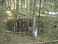 Karsta procesi mežā - panoramio.jpg