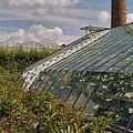 Kasladder, liggend op kas - Honselersdijk - 20405473 - RCE.jpg