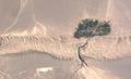 Keshit Village, Kerman provine, Iran.png