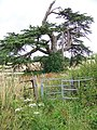 Kissing gate, West Winterslow - geograph.org.uk - 889146.jpg