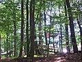 Kletterwald - panoramio (5).jpg