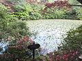 Kobe Municipal Arboretum in 2013-6-22 No,101.JPG
