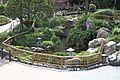 Koi Pond (33394111393).jpg