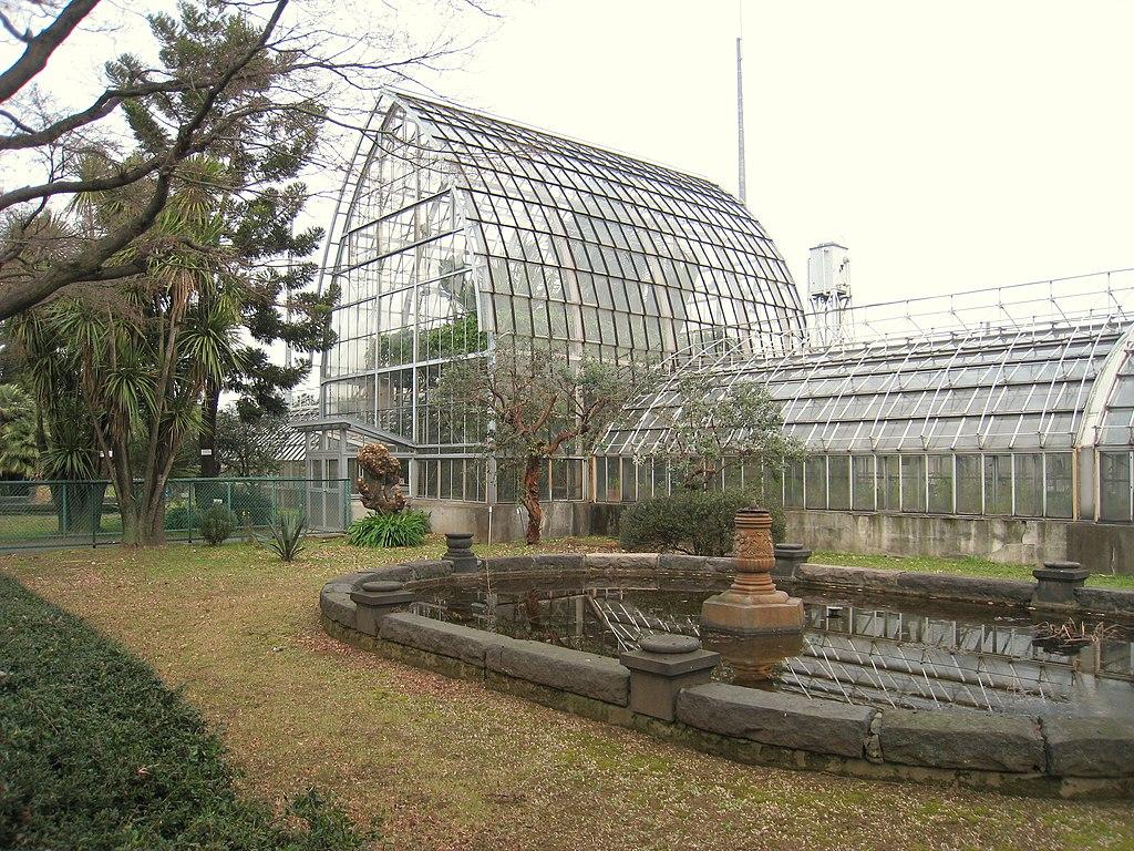 File Koishikawa Botanical Gardens Tokyo Glass House Jpg