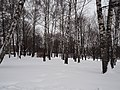 Kolomenskoye in winter 06.jpg