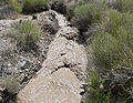 Kyle Canyon stream 5.jpg