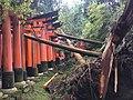 Kyoto after Typhoon Jebi 08.jpg