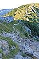 La Dôle - panoramio (88).jpg