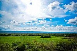 La naturaleza, Antiguo Morelos, Tamaulipas.jpg