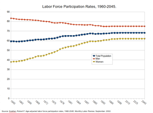 Labor force participation rates - 1960-2045.png