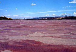 Lake Magadi, Kenya-5.jpg