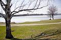 Lake Quannapowitt, Wakefield, Ma, USA.jpg