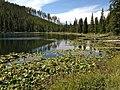 Lake in the Grand Teton National Park, Wyoming.jpg