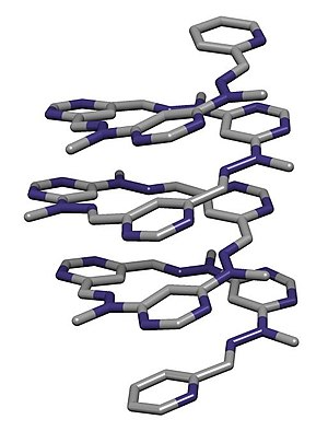 Jean-Marie Lehn - Crystal structure of a foldamer reported by Lehn et al. in Helv. Chim. Acta.,  2003, 86, 1598–1624.