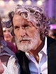 Life Ball 2013 - magenta carpet Aiden Shaw 02a.jpg