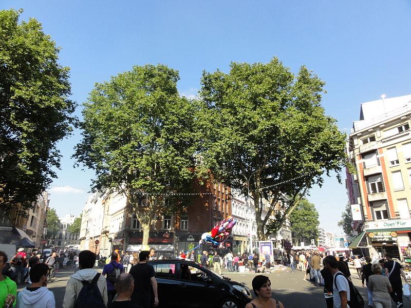 L'édition 2012 de la Braderie de Lille s'est déroulée du samedi 1er au dimanche 2 septembre.