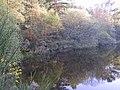 Loch in Montreathmont - geograph.org.uk - 170619.jpg