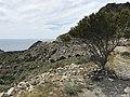Loma Pelada, Parque Natural Cabo de Gata - Nijar (41607597741).jpg